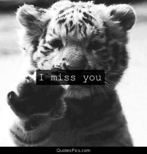 cute friends life little tiger love miss you sad tiger post navigation