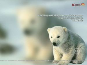 ... - knut, artic, quote, tundra, examople, mark twain, life, polar bear