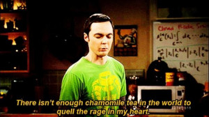 Related Pictures sheldon cooper sheldon cooper quotes the big bang ...