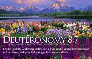 Bible Verses Deuteronomy 8:7 Flowers River Wallpaper