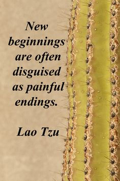 """New beginnings are often disguised as painful endings."""" -- Lao Tzu ..."""