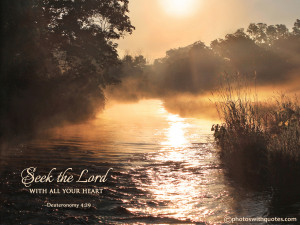 Bible Quote Picture - Seek the Lord with all your heart - Deuteronomy ...