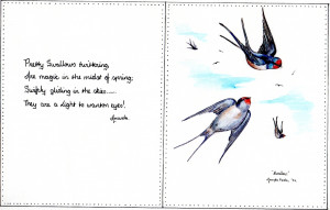swallows-and-poem008-web.jpg