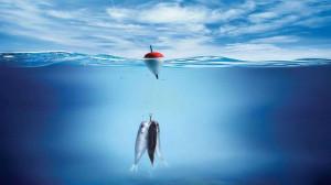 Bass Fishing Wallpaper Desktop