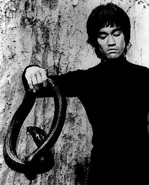 Bruce Lee's Life