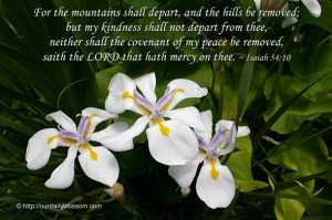 the mountains shall depart, and the hills be removed; but my kindness ...