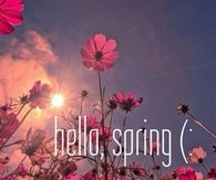 ... day of spring spring spring quotes hello spring hello spring quotes