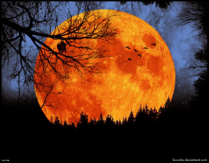 The flame-red moon, the harvest moon,