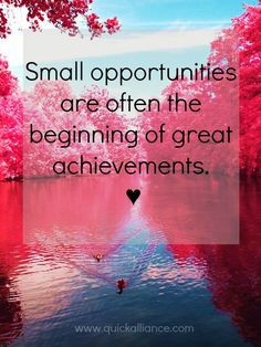 Business & Opportunity Quote