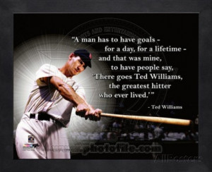 Ted Williams ProQuote Framed Memorabilia
