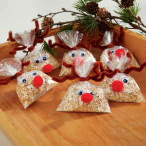 http://www.michaels.com/reindeer-food/B_56981.html