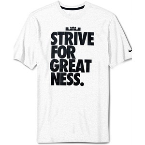Nike T-Shirt, Lebron Strive For Greatness Graphic Tee