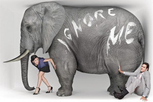... Acknowledging The Elephant In The Room and…What I Know For Sure