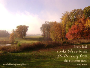 ... tree, Autumn Quote, Fall Quote, Autumn Leaves, Celebrating Everyday