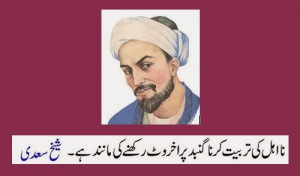 ... walnut-on-a-dome-Urdu-Quotes-Sheikh-Saadi-Quotes-and-Sayings.jpg