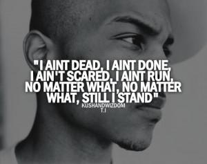 ... what, still I stand, T.I, rap, rap music, hip-hop, hip-hop mu