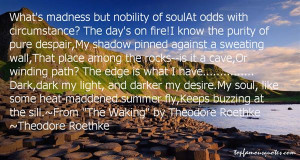 Roethke Quotes