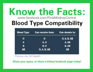Blood Type Matches