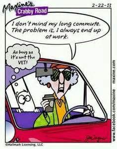 New Maxine Cartoons - Bing Images