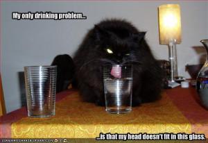 drinking-cat.jpg#drinking%20cat