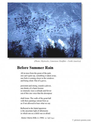 Picture/Poem Poster: Before Summer Rain
