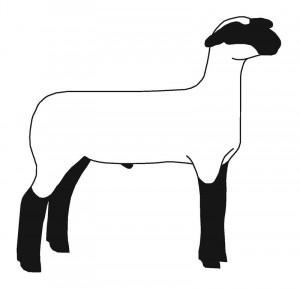 show lamb silhouette clip art