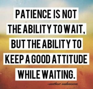 quotes about patience and time earth patience and time