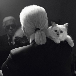 11 Karl Lagerfeld Quotes As Narrated By Choupette - Quotes - Racked ...