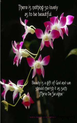 Lovely beautiful flower quotes