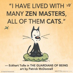 have lived with many zen masters, all of them cats. #EckhartTolle # ...