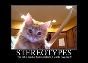 ... .net/images/2011/06/30/motivational-pics-stereotypes_130946055442.jpg