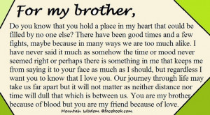 Quotes About Brothers From Sisters