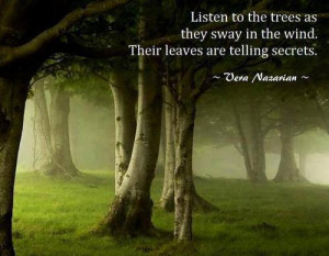 Listen to the trees as they sway in the wind. Their leaves are telling ...