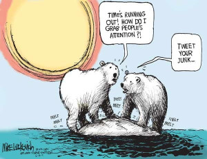 Polar bears worry about global warming