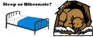 Funny Quotes About Hibernation