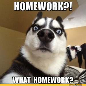 How to lie about homework
