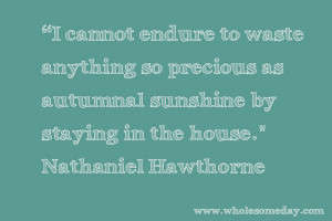 Quote from Nathaniel Hawthorne