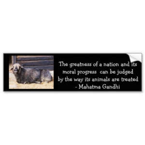 animal_rights_gandhi_quote_bumper_stickers ...
