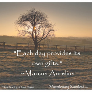 ... The Day: Motivational Quotes And The Picture Of The Tree In The Forest