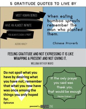 gratitude-quotes-10-15.jpg