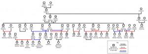 The Branning/Jackson family tree.