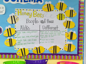 Honey Bees in our reading story, so we made these cute little bees ...