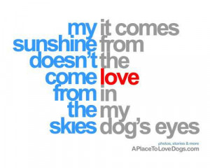 ... From Doesn't The Come Love From In The My Skies Dog's Eyes