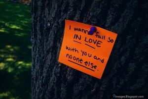 Quote, paper, art, tree, love