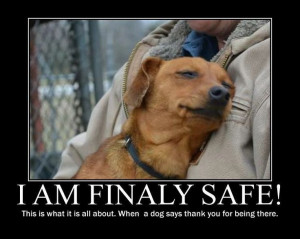 ... is what it's all about...when a dog says thank you for being there