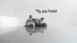 Funny Cat Sayings 8106 Hd Wallpapers