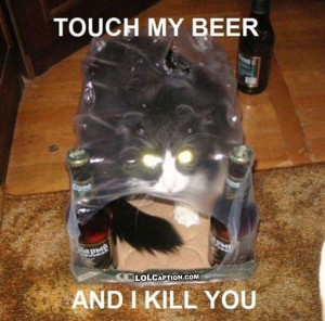 funny-cat-pictures-with-captions-lolcaption-sayings-beer-cats-photos