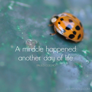 miracle happened another day of life, quote by Paulo Coelho