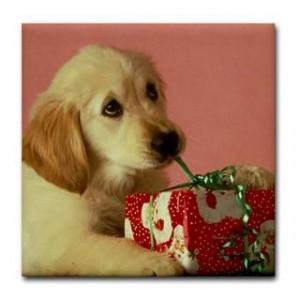 161687546_funny-golden-retriever-gifts-merchandise-funny-golden-.jpg