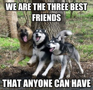 ... are the three best friends that anyone can have - The hangover quote